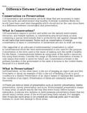 Conservation and Preservation - Reading + Questions