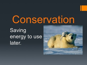 Conservation and Transfer Vocabulary NC ES 3.P.3
