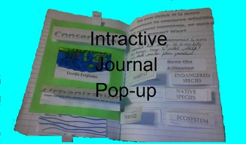 Conservation and the Everglades Interactive Notebook