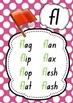 Initial Consonant Blends CCVC Words 21 Phonics Posters