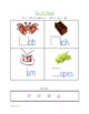 Consonant Blends Cr, Br, Dr and Gr Packet