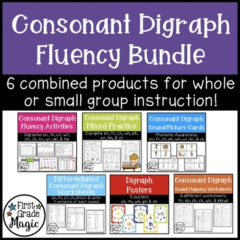 Digraph Fluency Bundle {Small Group Instruction and Intervention}