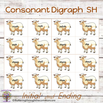 SH Word Work  initial and final Consonant Digraph (56 cards)