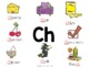 Consonant Digraphs: Anchor Charts & Activities for Sh, Wh,