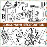 Consonant Recognition and Letter Deconstruction with Exten