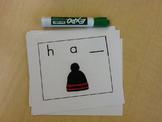 Consonant Vowel Consonant (CVC) Fun!