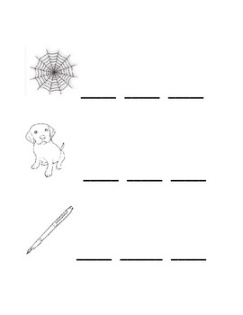 Consonant Vowel Consonant (CVC) Writing Homework