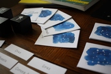 Constellations 3-Part Cards