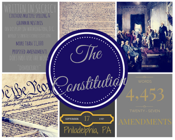 Constitution Fun Facts Infographic Poster