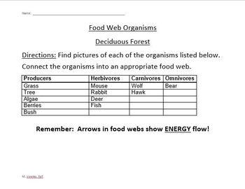 Constructing Food Webs Activity