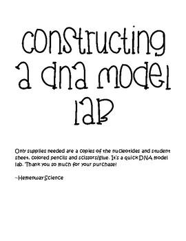 Constructing a DNA Model Lab
