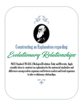 Constructing an Explanation regarding Evolutionary Relationships