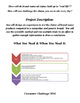 Consumer Challenge Project - Directions, Packet, and Assig