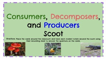 Consumer, Decomposer, and Producer Scoot Activity