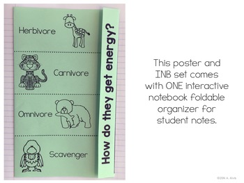 Consumers Posters and Interactive Notebook INB Set