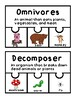 Consumers,Producers, Decomposers Puzzles