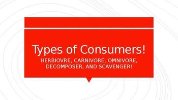 Consumers (herbiovre, omnivore, carnivore)