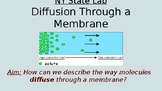 Content Driven Diffusion Through a Membrane State Lab