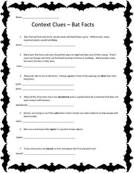 Context Clues - Bats