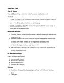 Context Clues Organizer Formal Lesson Plan + Activity