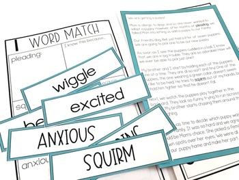 Context Clues Fiction Reading Unit With Centers