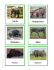 Continent Animal Cards Bundle 2