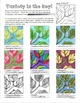 Contour Drawing details and Extension activity