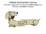 Contractions with Action (Contraction Canines) Already Created