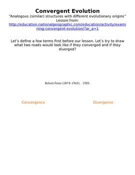 Convergent Evoltuion Guided Lesson