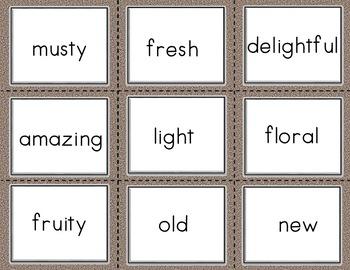 Conversation Kit: 5 Senses {ESL} (Kindergarten Wonders Unit 1 Week 3)