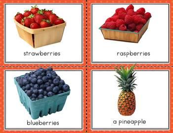 Conversation Kit: On the Farm {ESL} (Kindergarten Wonders Unit 5 Week 3)