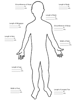 Convert Centimeters to Inches using the Human Body
