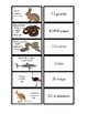 Converting Measurements Animal Matching Game 4.MD.A.1 & 4.MD.A.2