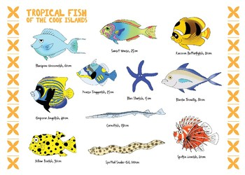 Cook Islands Tropical Fish Poster