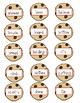 Cookie Crunch Sight Word Game (aligned to 1R IRLA)