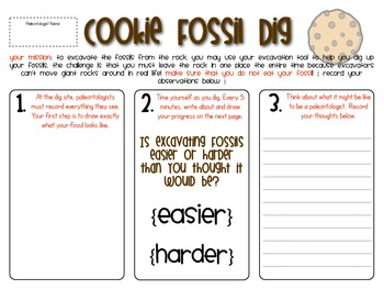 3rd grade science worksheets fossils 3rd best free printable worksheets. Black Bedroom Furniture Sets. Home Design Ideas