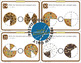 Cookie Fractions Bundle : Task Cards , Manipulatives , and Posters