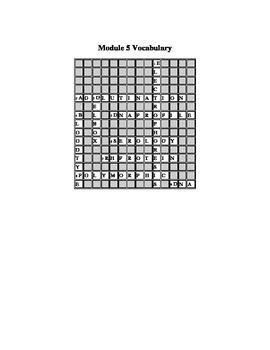 Cookie Jar Mystery - Module 5 Crossword Puzzle
