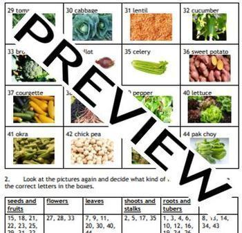 Cooking, Health: Know your vegetables - colorful resource pack