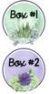 Cactus Classroom Labels Editable