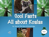 Cool Facts All About Koalas! {PowerPoint Presentation}