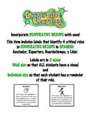 Cooperative Group Labels w/Description (SPANISH)