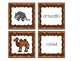 Cooperative Learning Dazzling Duos Pairs that Care Desert Themed