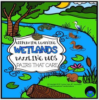 Cooperative Learning Dazzling Duos Pairs that Care Wetlands Themed