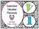 Cooperative Learning Mats -Owl theme