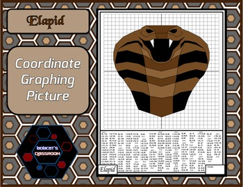 Coordinate Graphing Picture - Elapid
