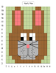 Coordinate Grid Mystery Picture-bunny  Easter