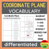Differentiated Coordinate Plane Vocabulary