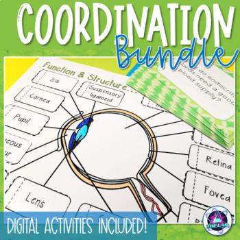 Coordination in Humans BUNDLE