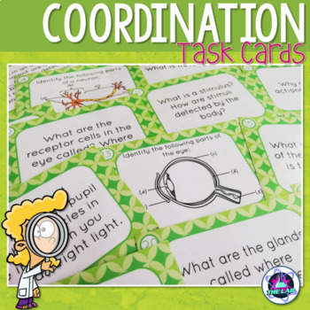 Coordination in Humans Task Cards